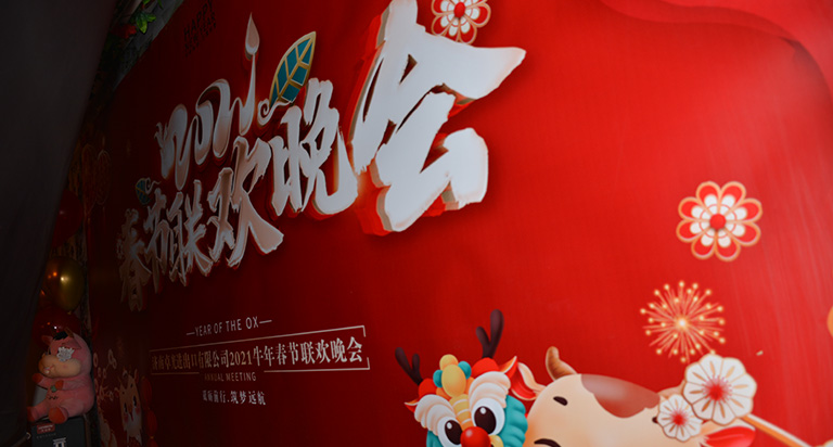 Our company's Chinese New Year party